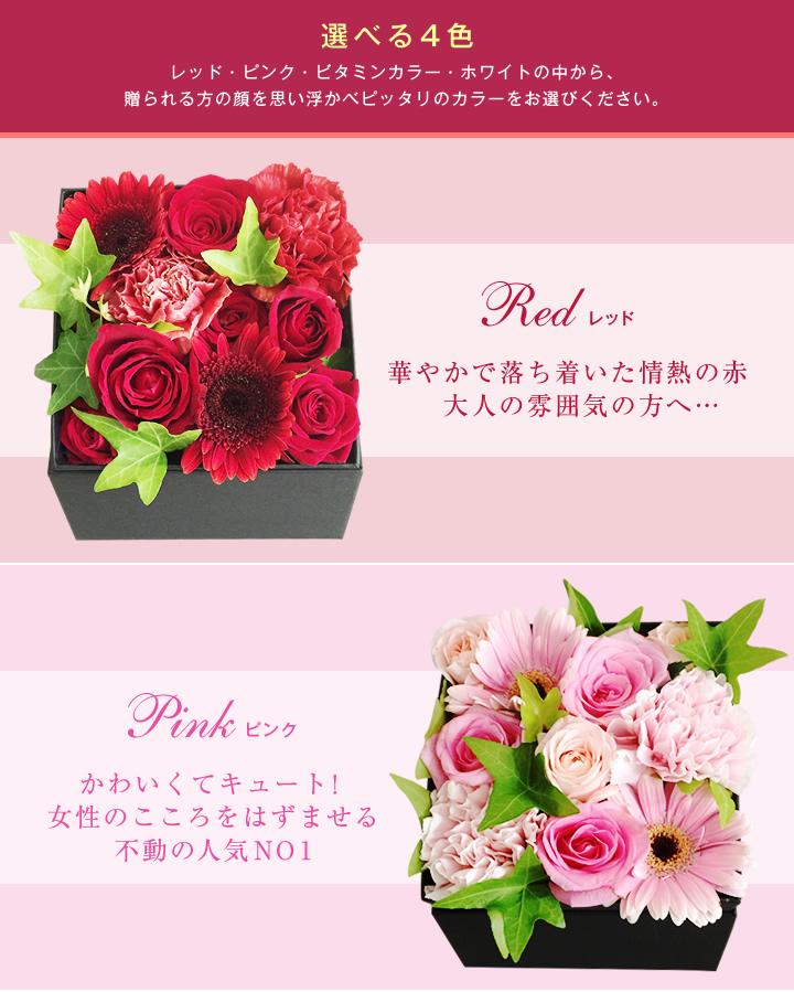 BOXアレンジ レッド、ピンク紹介