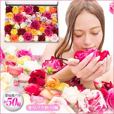 女性が喜ぶプレゼントなら香り高いバラを使ったローズバス